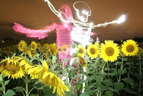Световые картины Янне Парвиайнена (фото)