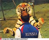 Предъявите льва и тигра!