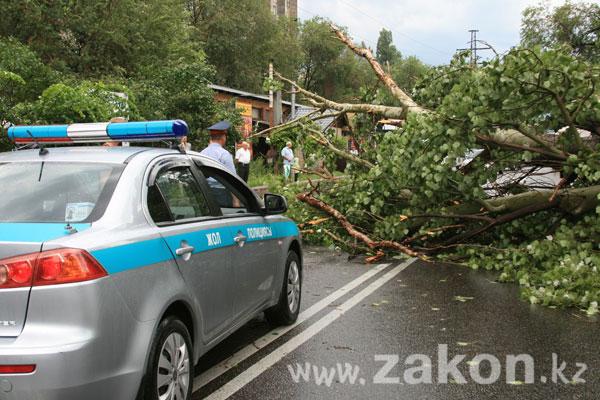 Последствия урагана в Алматы (фоторепортаж)