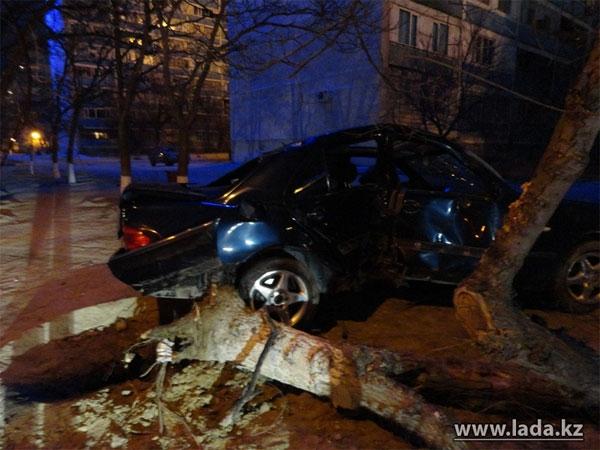 Утром в Актау автомобиль врезался в дерево (фото)