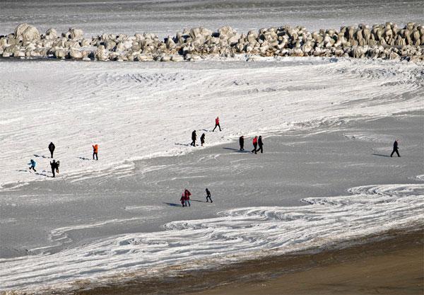 Черное море впервые за 30 лет покрылось льдом (фото)