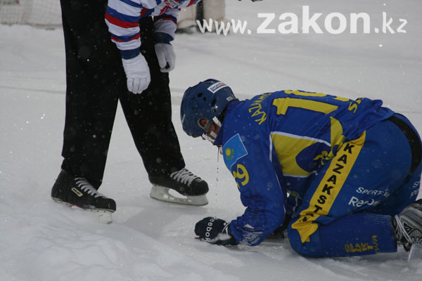 Н. Назарбаев посетил полуфинальный матч Чемпионата Мира по бенди