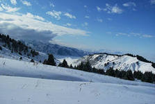 ТЭО строительства горнолыжного курорта «Кок-Жайляу» нарушает Орхусскую конвенцию, считает эксперт