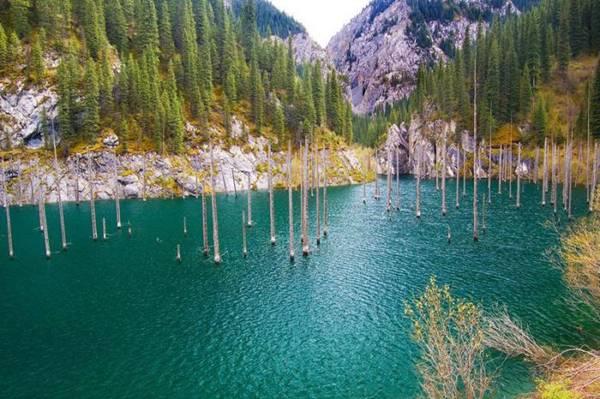 Озеро Каинды - затонувший лес в Казахстане