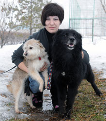 Издевательства над животными по-прежнему остаются безнаказанным преступлением