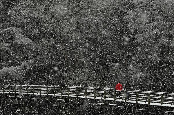 Прощай, зима 2012-2013!