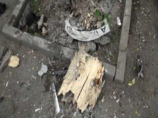 В Алматы водитель уснул за рулем и врезался в дерево (фото)