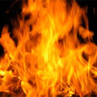 В Атырау огонь от пожара в резервате приближается к городу