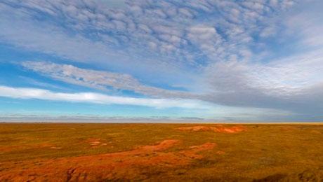 В Жамбылской области возвращают земли в сельскохозяйственный оборот