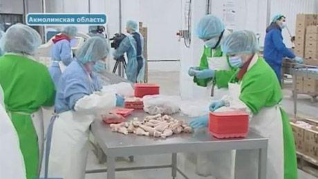 Государство готово помогать производителям мяса птицы (видео)