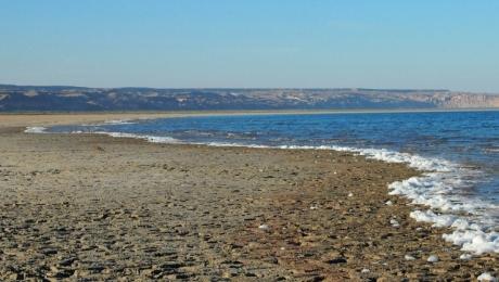 Аральское море переживает второе рождение