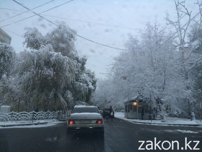 Начавшийся вчера мелкий снег с дождем за ночь превратился в настоящий зимний снегопад.