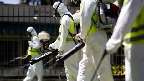 Лихорадка Зика признана угрозой мирового масштаба