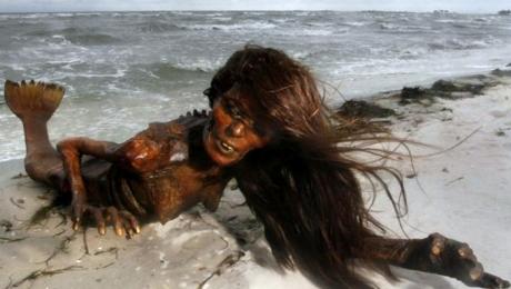 Ухудшение экологической обстановки на Каспии: в море обитает русалка