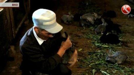 Фермеру из ВКО и его кроликам не хватает земли