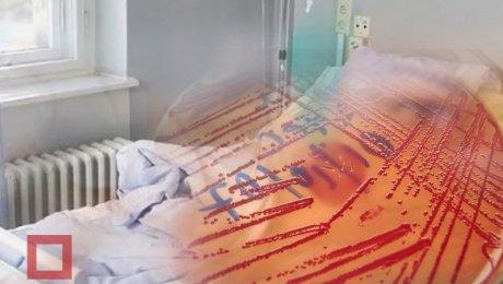 Увсех госпитализированных вКарагандинской области подтвердилась сибирская язва