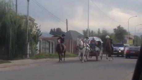 Удивительный свадебный кортеж вКаскелене удивил казахстанцев