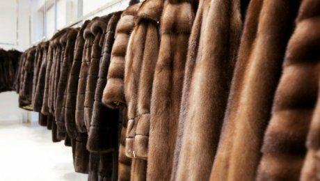 ВРоссии запретят продажу немаркированных меховых изделий