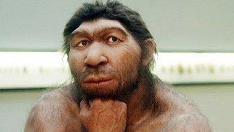 Нынешние люди примитивнее неандертальцев— Ученые