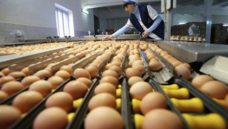 Яйцо вдень понижает риск инсульта