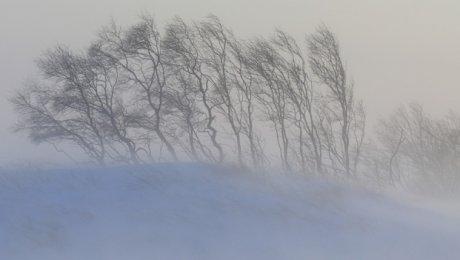 Из-за метели ограничено движение на трассах Алматинской иЖамбылской областей