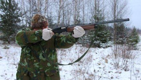 ВГагаринском районе браконьер застрелил лося