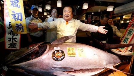 Голубого тунца весом 212кг продали на известном рыбном аукционе вЯпонии