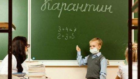 Шадринские школы закрываются накарантин из-за ОРВИ