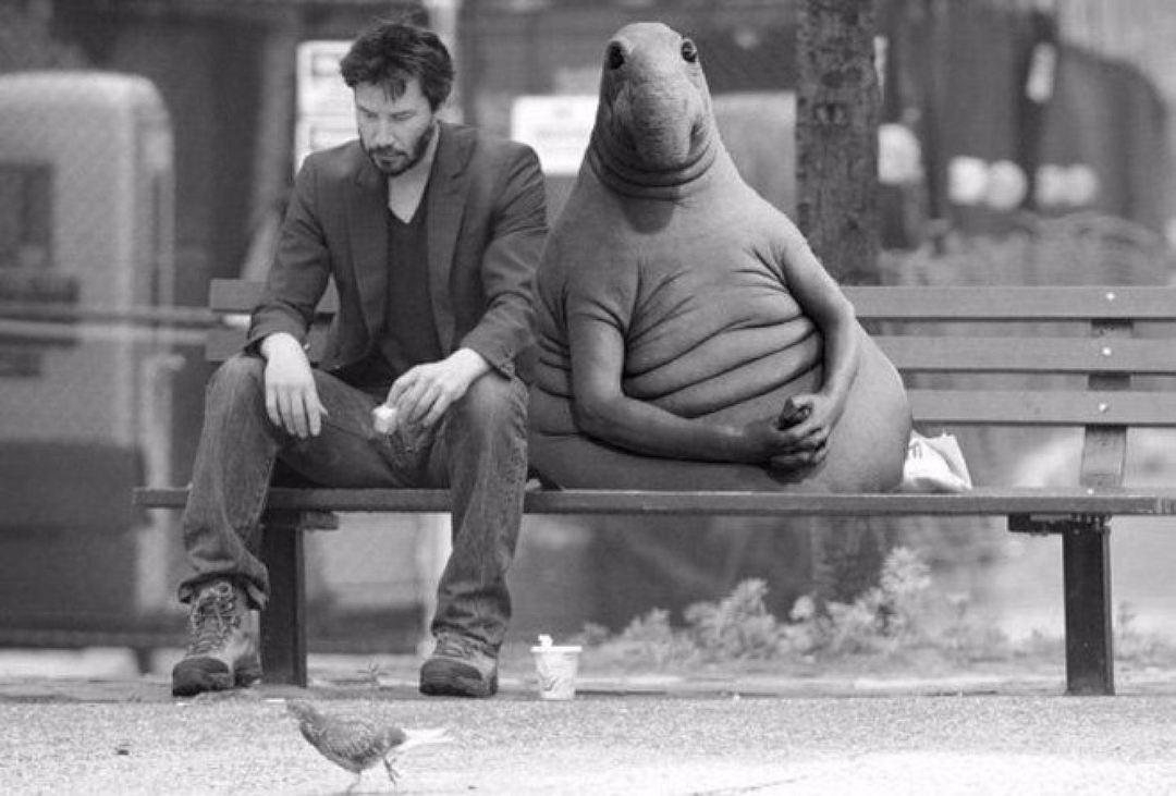 ВКалининграде обнаружили скульптуру мема «Ждун»