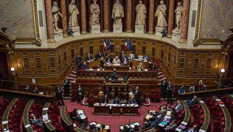 Вофранцузском Сенате прошли обыски поделу супруги кандидата впрезиденты Фийона