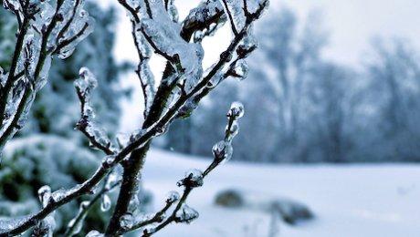 Синоптики прогнозируют сильные снегопады вКазахстане