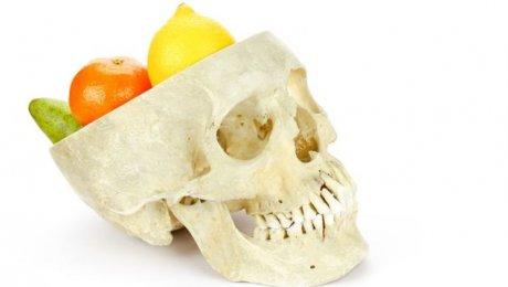Мозг приматов увеличился благодаря употреблению фруктов— Ученые
