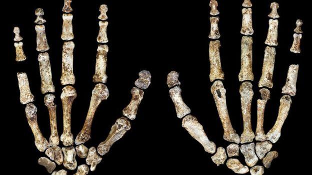 Ученые выяснили, что первобытные люди появились всего 300 000 лет назад