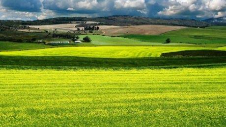 В Минсельхозе рассказали об условиях изъятия земель под госнужды