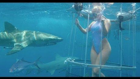 Порноактрису впроцессе съемок укусила акула