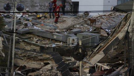 ВМексике случилось мощнейшее землетрясение, сообщается опогибших