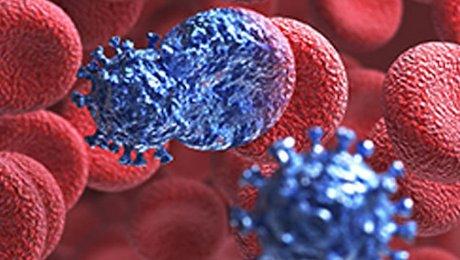 Американские ученые разработали антитела, которые убивают до99% штаммов ВИЧ