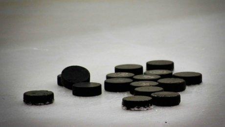 В столице России убит экс-вратарь хоккейной сборной СССР Виктор Толмачев