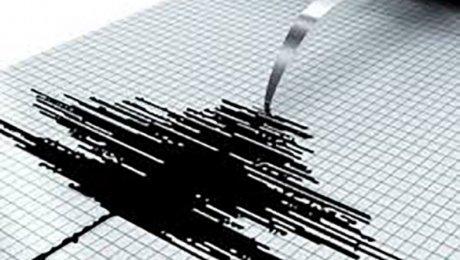 Землетрясение магнитудой 4,8 зарегистрировано уберегов Камчатки— Срочно вномер