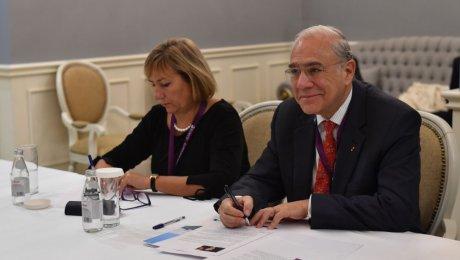 Казахстан может вступить вОЭСР вкачестве полноценного члена к 2020г.