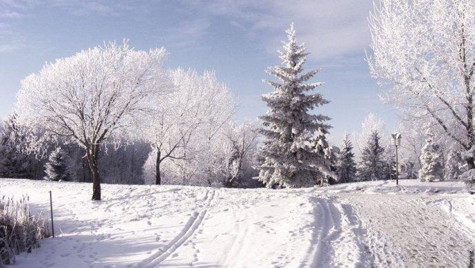 Опогоде надекабрь для казахстанцев поведали синоптики