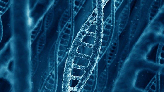 Ученые: фастфуд провоцирует «медленный» рак