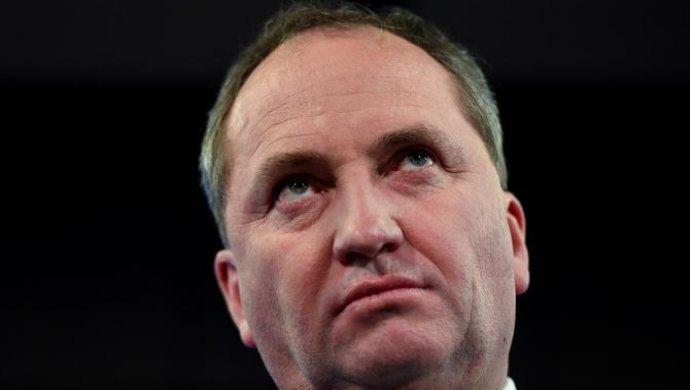 Вице-премьер Австралии нафоне «служебного романа» подал вотставку
