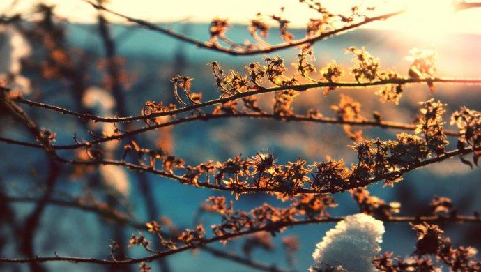 Какой будет погода впоследние дни зимы вКазахстане