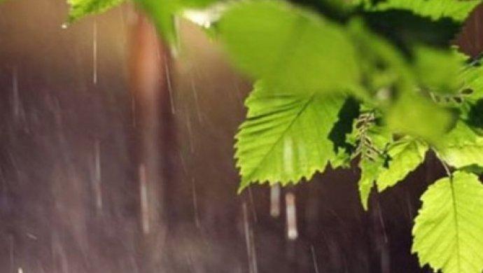Вближайшие три дня ЮКО накроют дожди, грозы идаже град