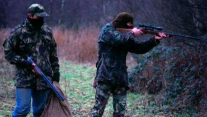 Краснокнижная туранга, косуля и таутеке изъяты у браконьеров в Алматинской области