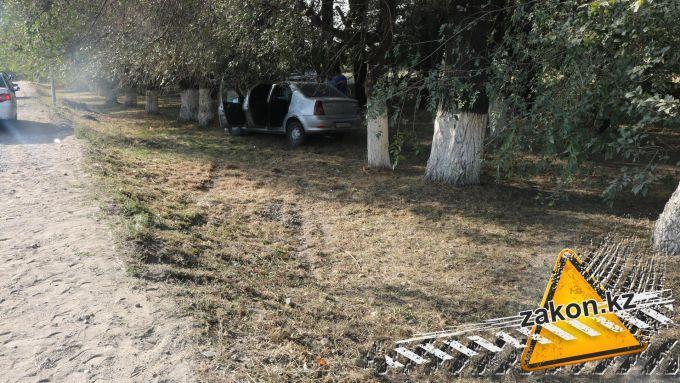 Мужчину сбили насмерть в 20-ти метрах от дома близ Алматы