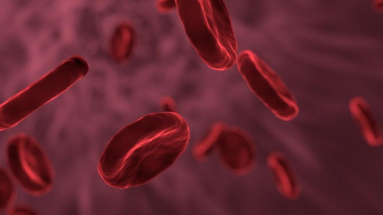 Ученые связали риск заражения COVID-19 срезус-фактором