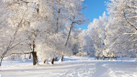 Прогноз погоды на 5 января: осадки ожидаются на большей части страны