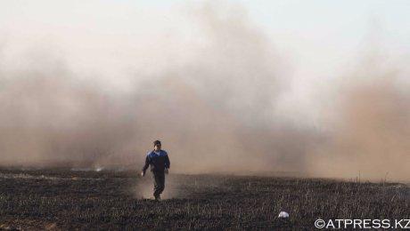 На побережье Каспия третий день продолжается пожар